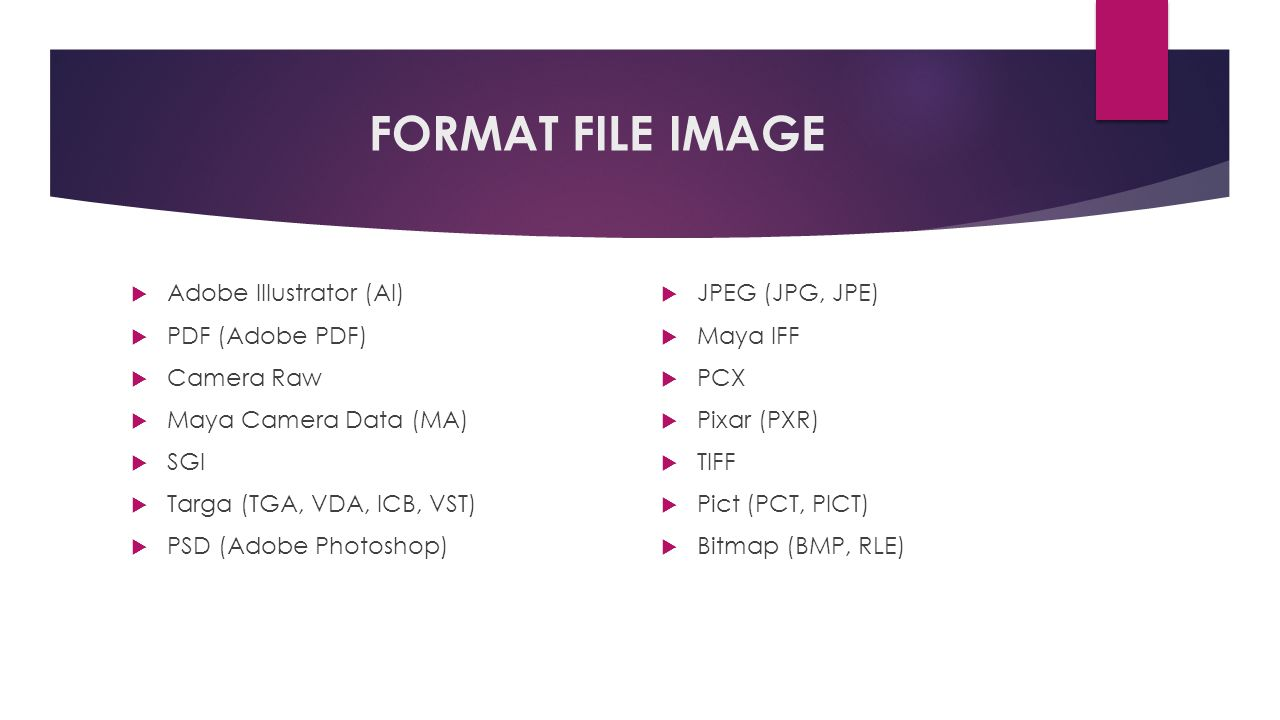 FORMAT FILE IMAGE Adobe Illustrator (AI) PDF (Adobe PDF) Camera Raw