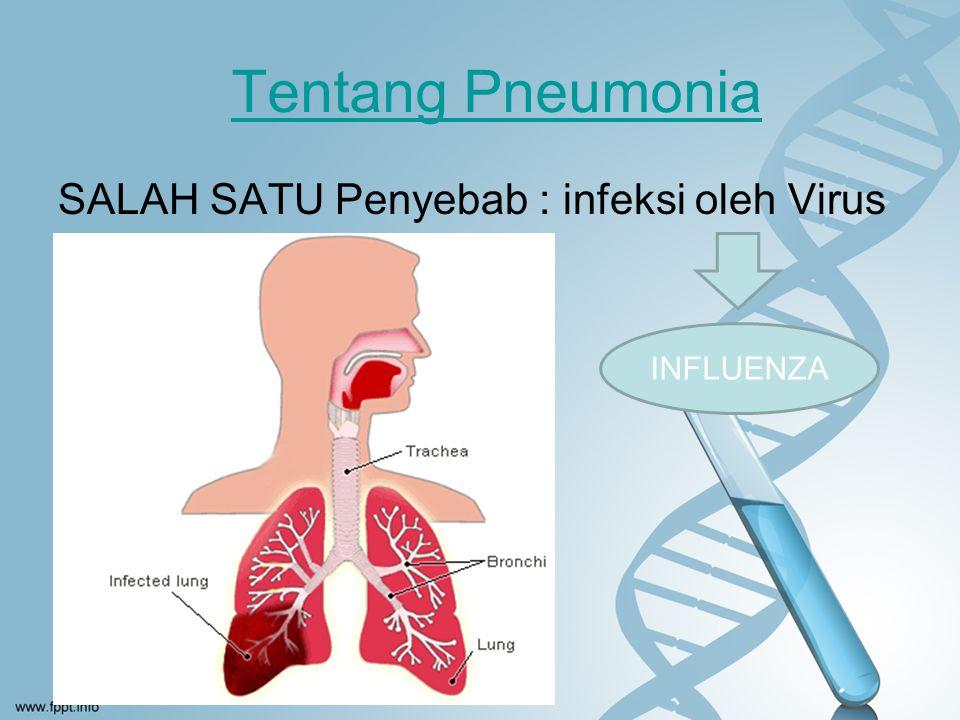 Tentang Pneumonia SALAH SATU Penyebab : infeksi oleh Virus INFLUENZA