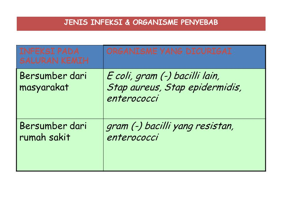 JENIS INFEKSI & ORGANISME PENYEBAB