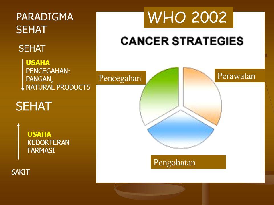 WHO 2002 SEHAT PARADIGMA SEHAT SEHAT Perawatan Pencegahan Pengobatan