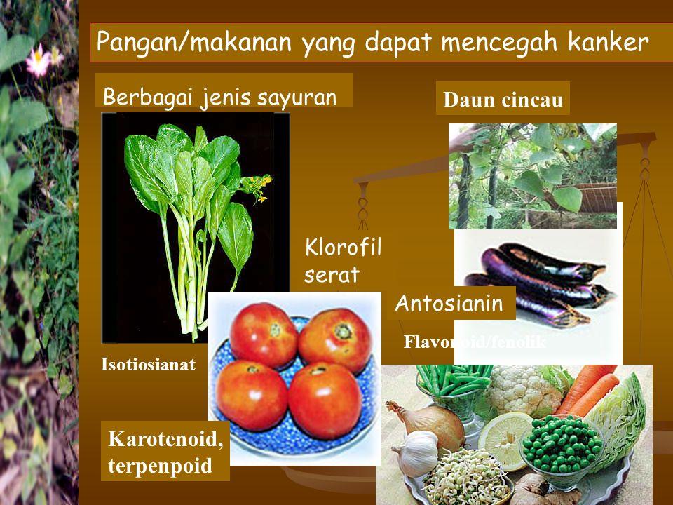 Pangan/makanan yang dapat mencegah kanker