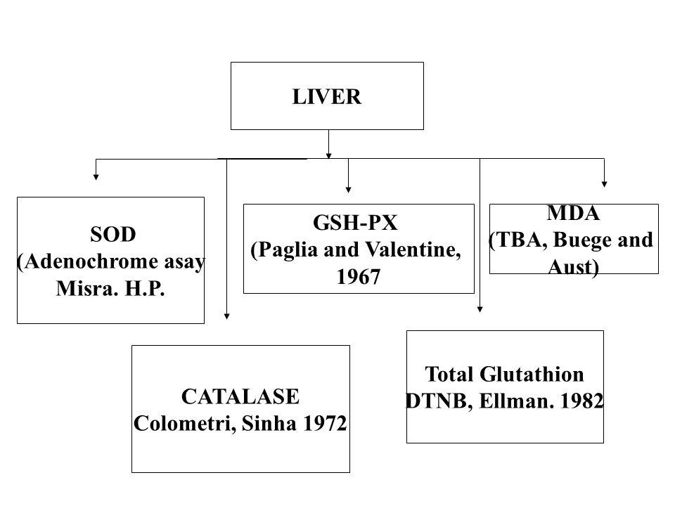 LIVER CATALASE. Colometri, Sinha 1972. SOD. (Adenochrome asay. Misra. H.P. GSH-PX. (Paglia and Valentine,