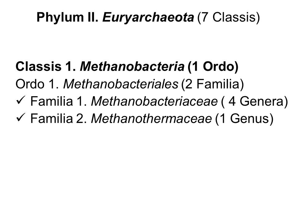 Phylum II. Euryarchaeota (7 Classis)