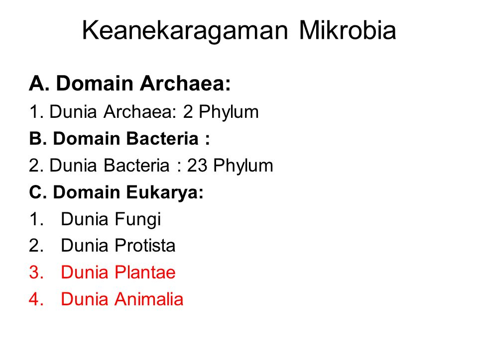 Keanekaragaman Mikrobia