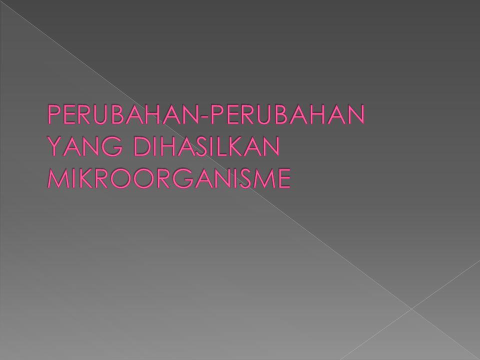 PERUBAHAN-PERUBAHAN YANG DIHASILKAN MIKROORGANISME