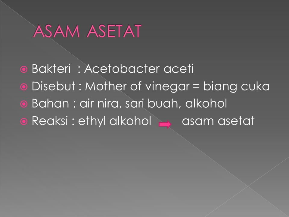 ASAM ASETAT Bakteri : Acetobacter aceti