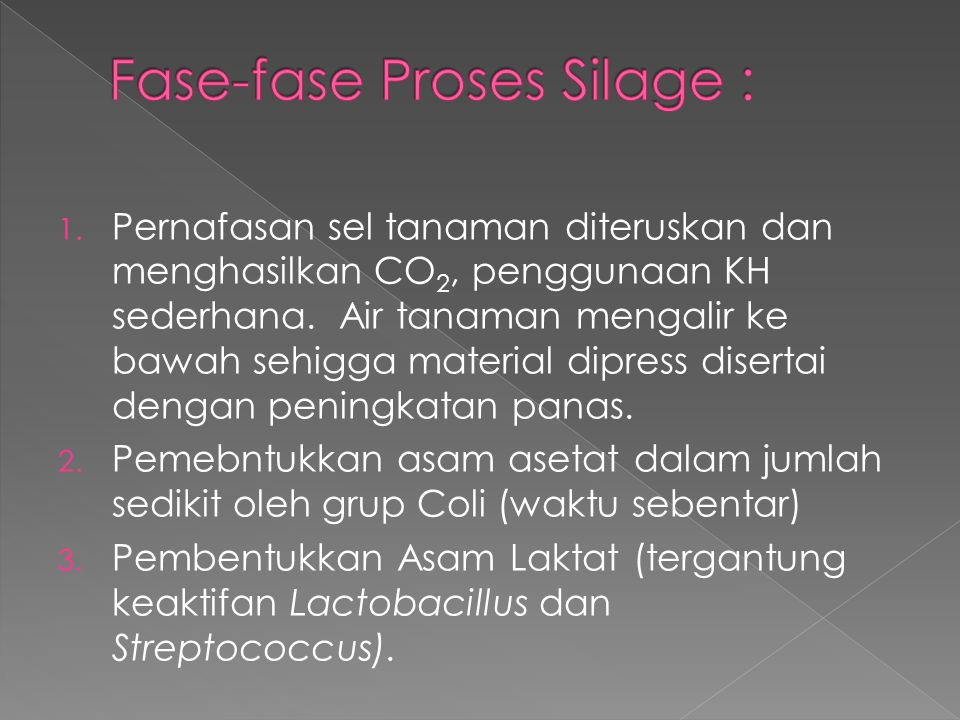 Fase-fase Proses Silage :
