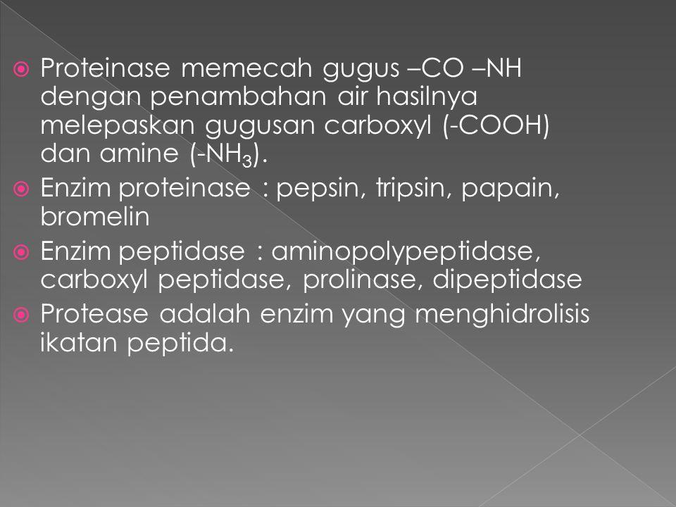 Proteinase memecah gugus –CO –NH dengan penambahan air hasilnya melepaskan gugusan carboxyl (-COOH) dan amine (-NH3).