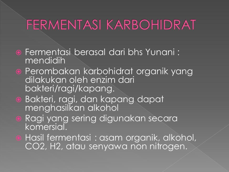 FERMENTASI KARBOHIDRAT