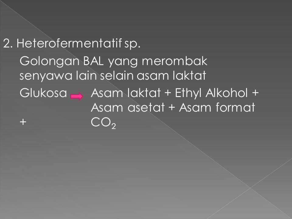 2. Heterofermentatif sp. Golongan BAL yang merombak senyawa lain selain asam laktat.