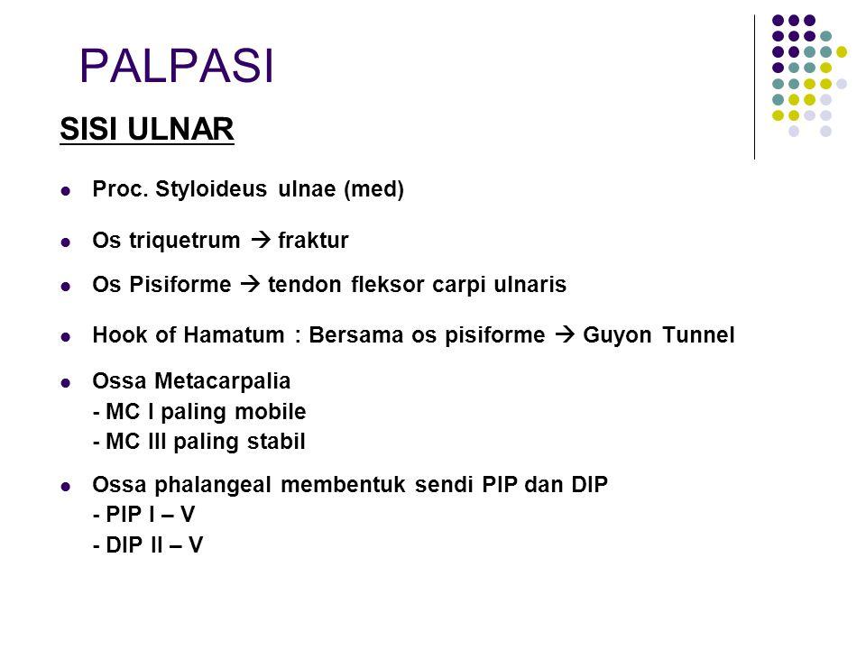 PALPASI SISI ULNAR Proc. Styloideus ulnae (med)