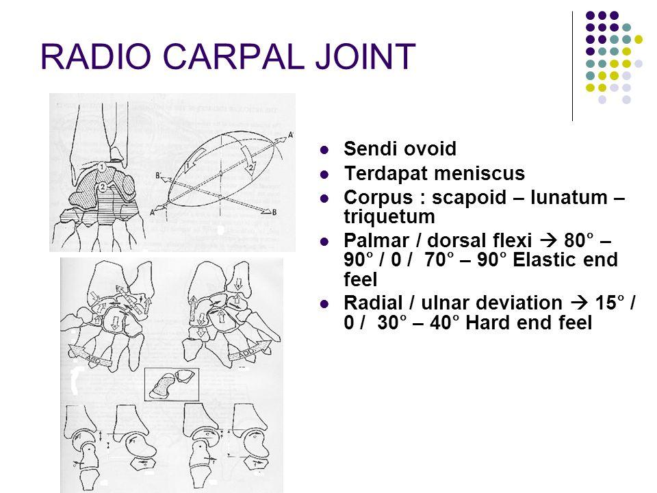 RADIO CARPAL JOINT Sendi ovoid Terdapat meniscus
