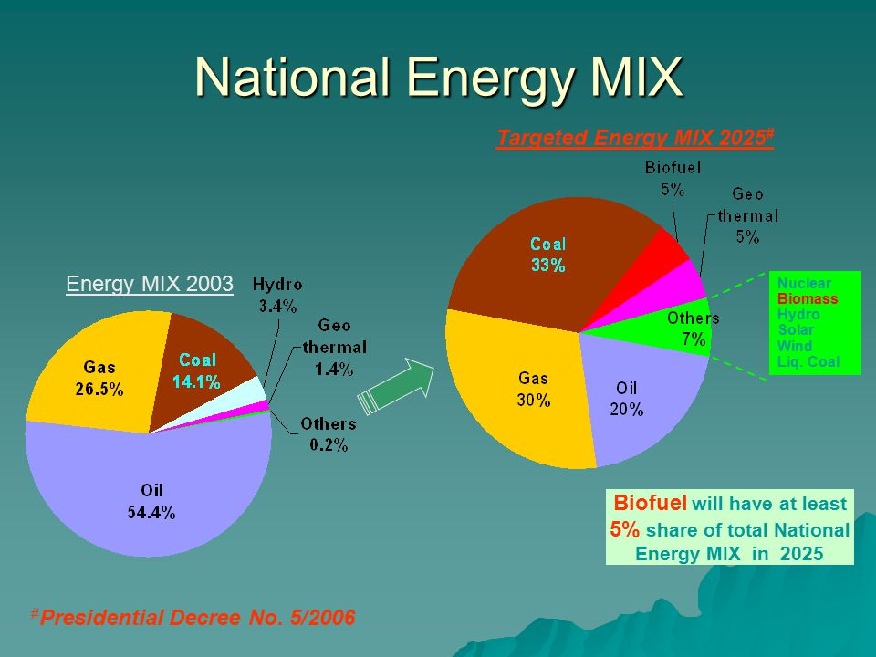 National Energy MIX Targeted Energy MIX 2025# Energy MIX 2003