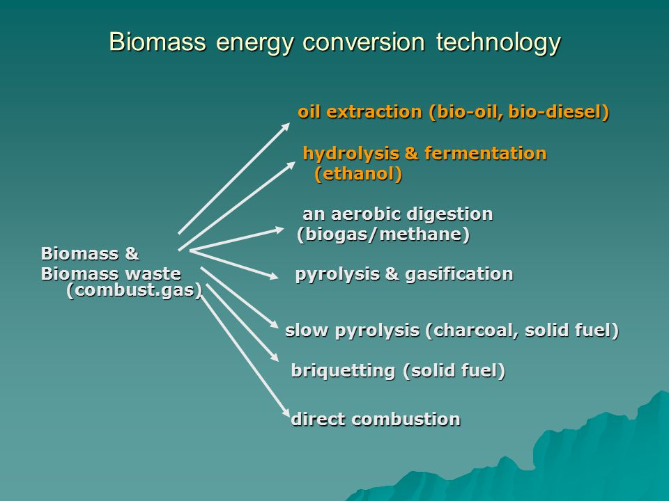 Biomass energy conversion technology