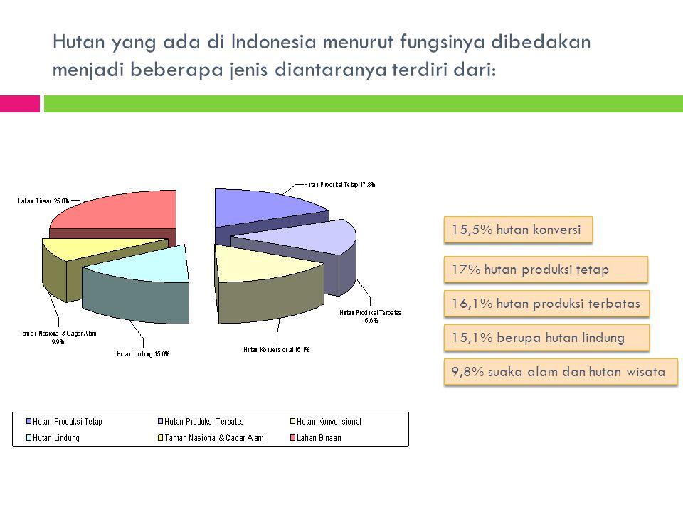 Hutan yang ada di Indonesia menurut fungsinya dibedakan menjadi beberapa jenis diantaranya terdiri dari: