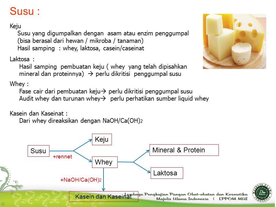 Susu : Keju Mineral & Protein Susu Whey Laktosa Keju