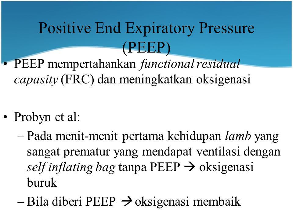 Positive End Expiratory Pressure (PEEP)