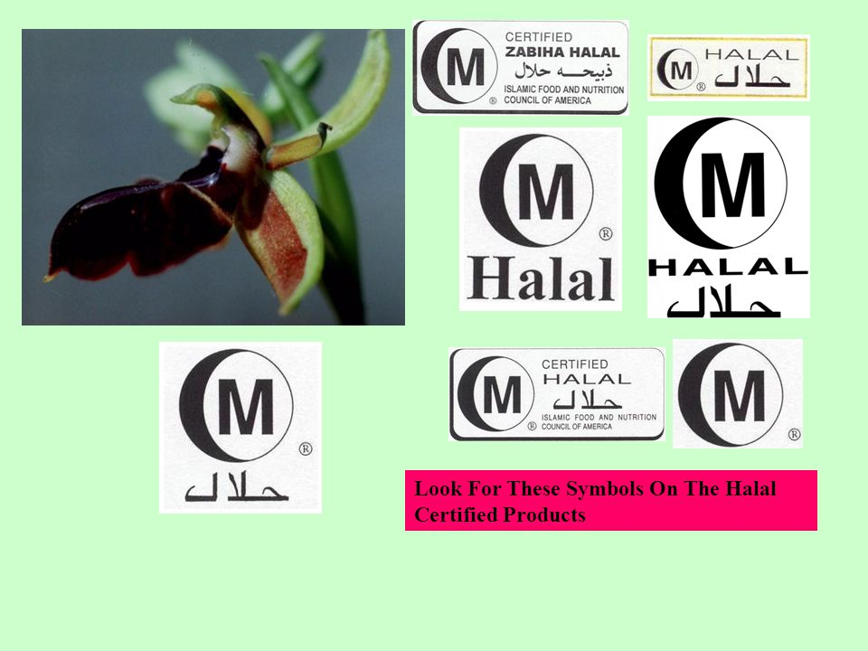 Look For These Symbols On The Halal Certified Products