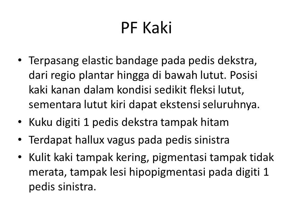 PF Kaki