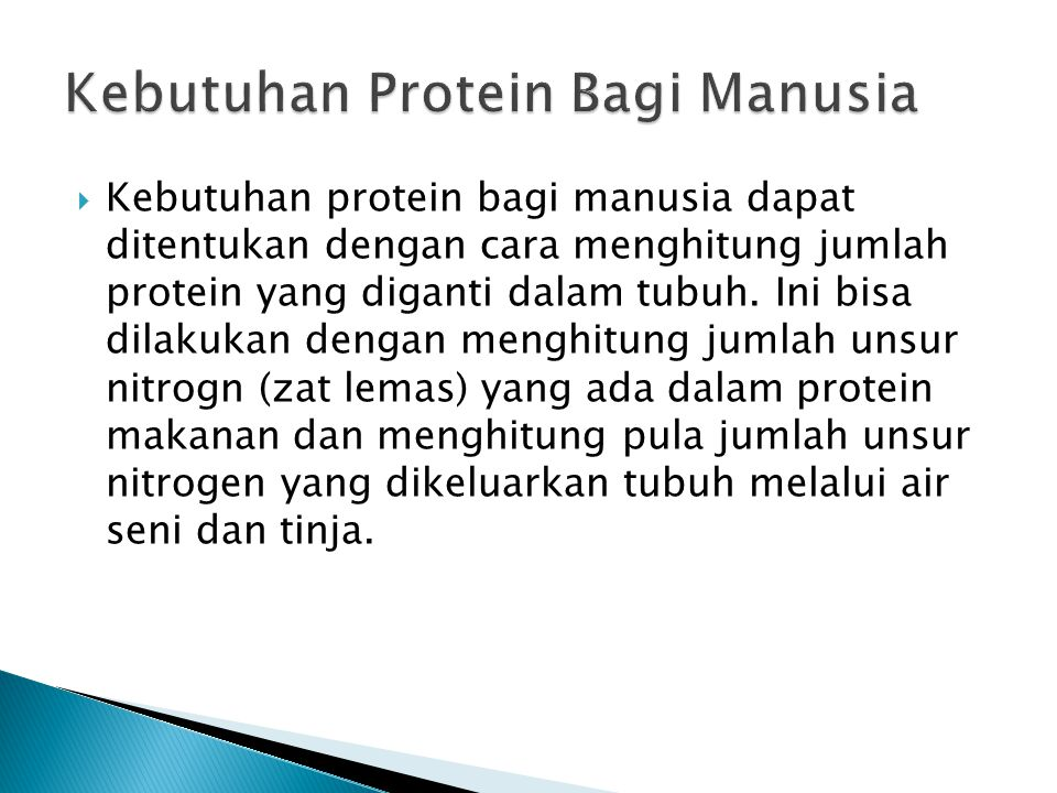 Kebutuhan Protein Bagi Manusia