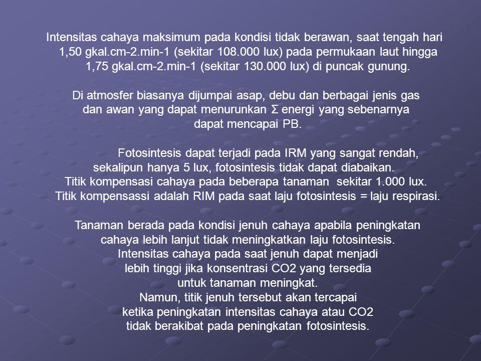 1,50 gkal.cm-2.min-1 (sekitar 108.000 lux) pada permukaan laut hingga