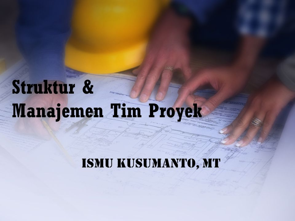 Struktur & Manajemen Tim Proyek
