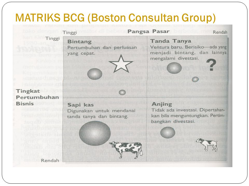 MATRIKS BCG (Boston Consultan Group)