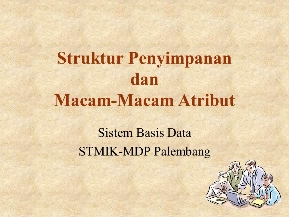 Struktur Penyimpanan dan Macam-Macam Atribut
