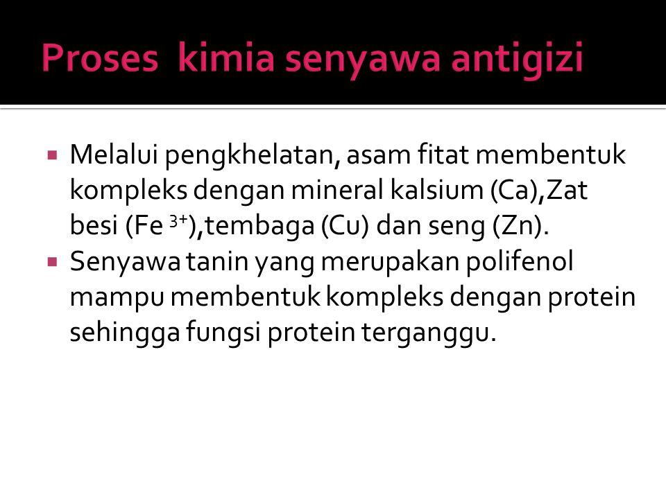 Proses kimia senyawa antigizi