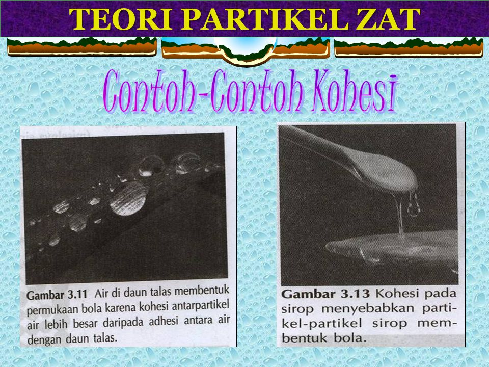 TEORI PARTIKEL ZAT Contoh-Contoh Kohesi