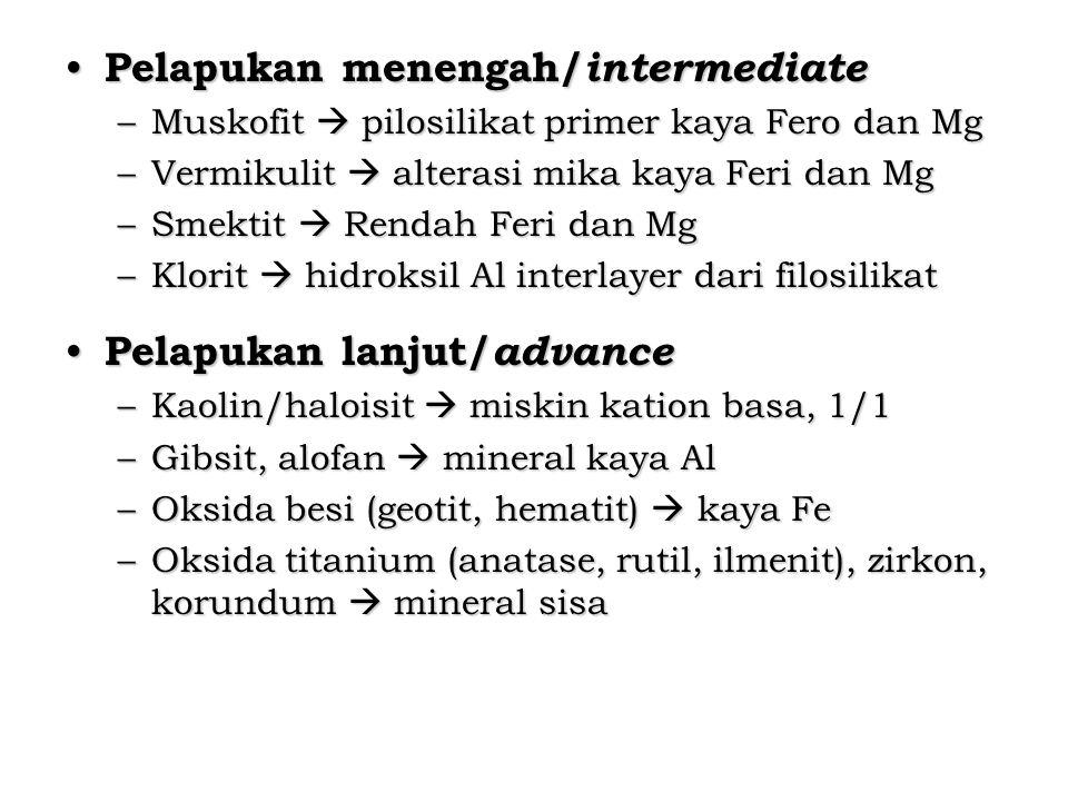 Pelapukan menengah/intermediate