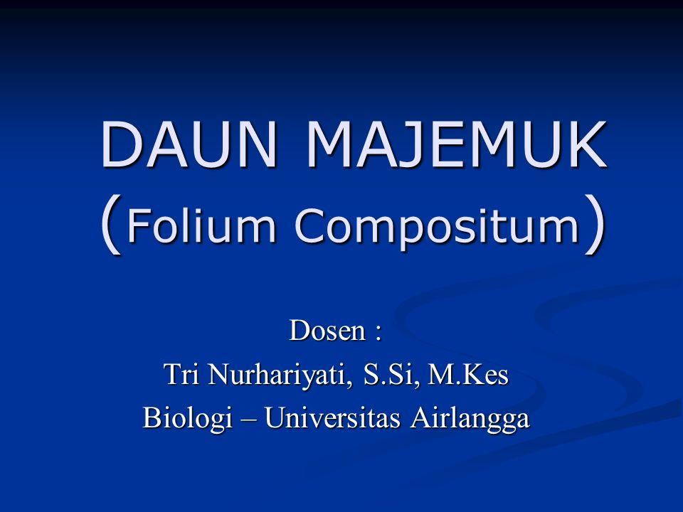 DAUN MAJEMUK (Folium Compositum)