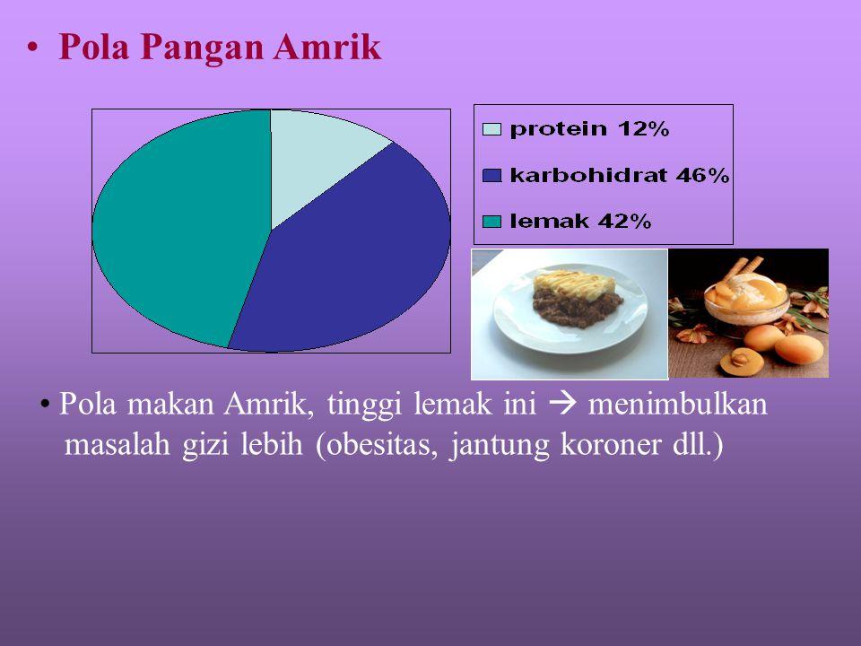 Pola Pangan Amrik Pola makan Amrik, tinggi lemak ini  menimbulkan