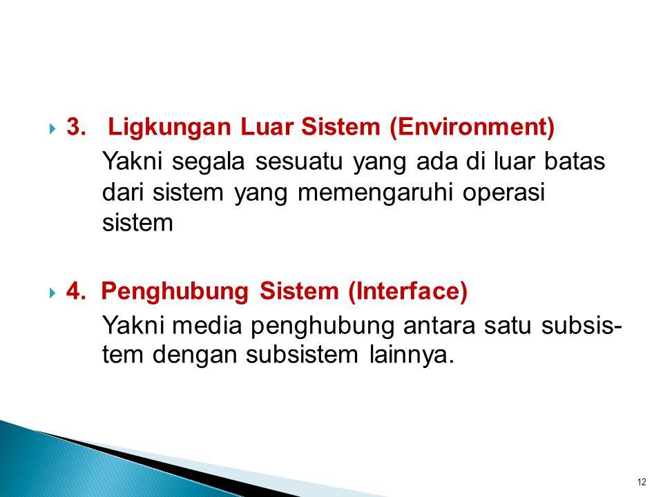 3. Ligkungan Luar Sistem (Environment)