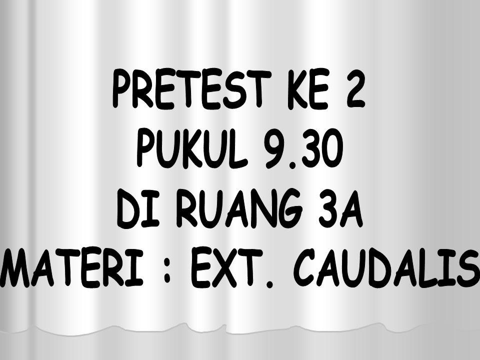 PRETEST KE 2 PUKUL 9.30 DI RUANG 3A MATERI : EXT. CAUDALIS