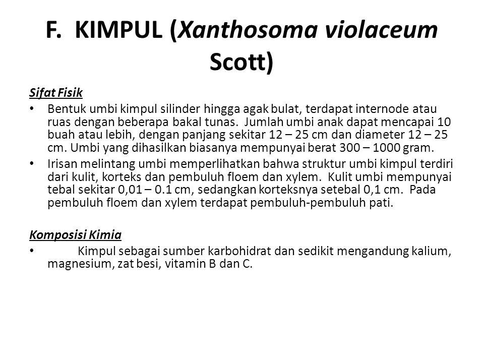 F. KIMPUL (Xanthosoma violaceum Scott)