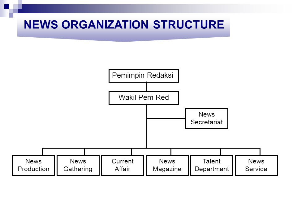 NEWS ORGANIZATION STRUCTURE