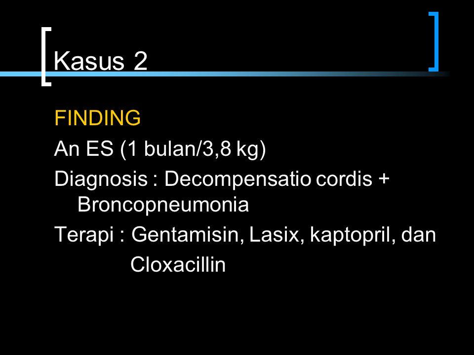 Kasus 2 FINDING An ES (1 bulan/3,8 kg)