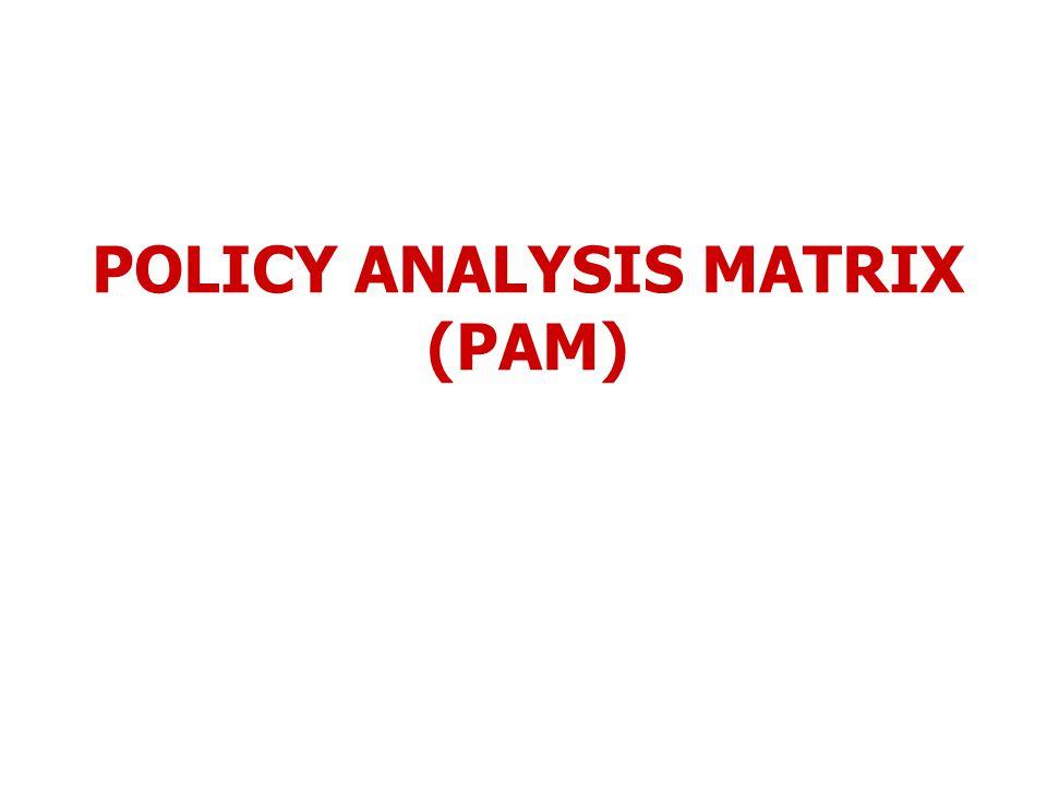 POLICY ANALYSIS MATRIX (PAM)