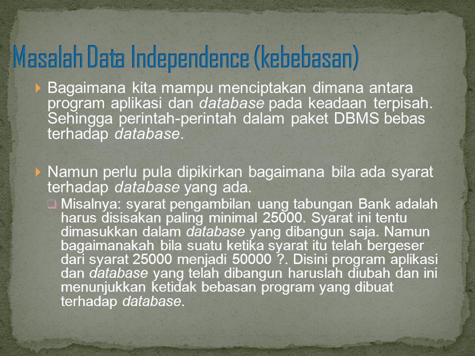 Masalah Data Independence (kebebasan)