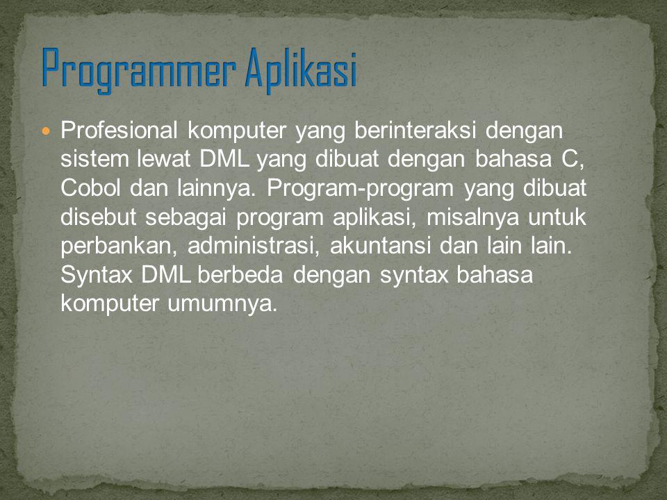 Programmer Aplikasi