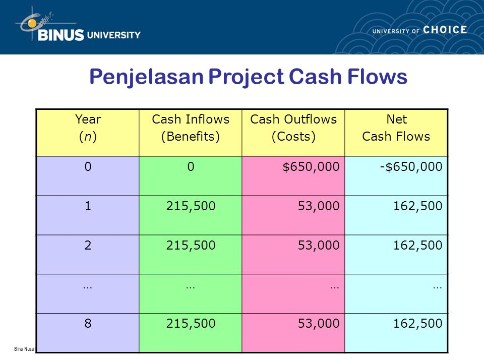 Penjelasan Project Cash Flows