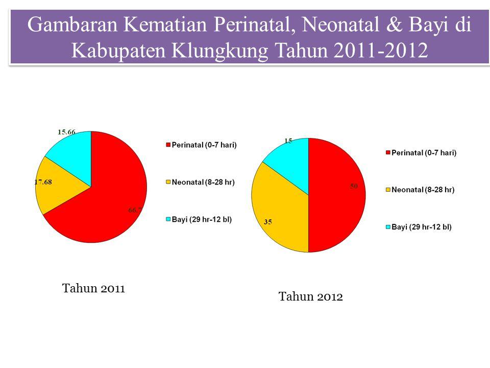 Gambaran Kematian Perinatal, Neonatal & Bayi di Kabupaten Klungkung Tahun 2011-2012