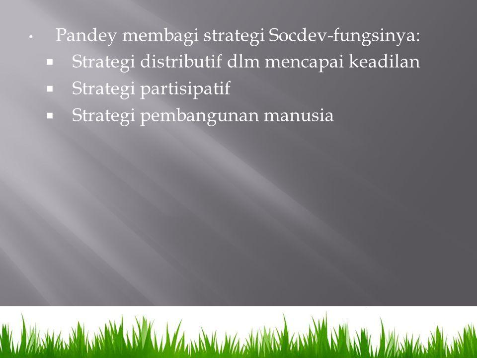 Pandey membagi strategi Socdev-fungsinya: