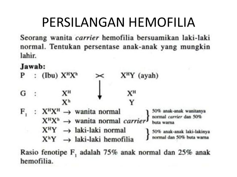 PERSILANGAN HEMOFILIA