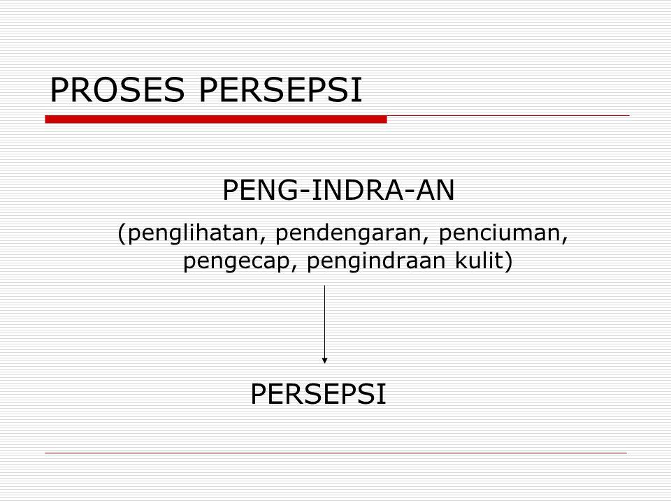 PROSES PERSEPSI PENG-INDRA-AN