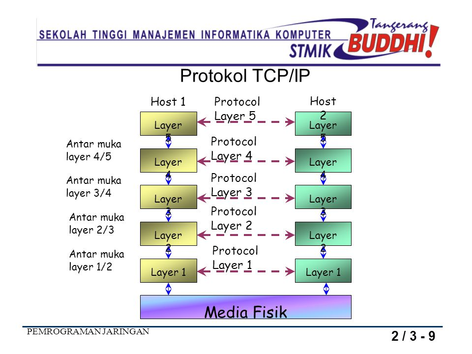Protokol TCP/IP Media Fisik 2 / 3 - 9 Protocol Layer 5