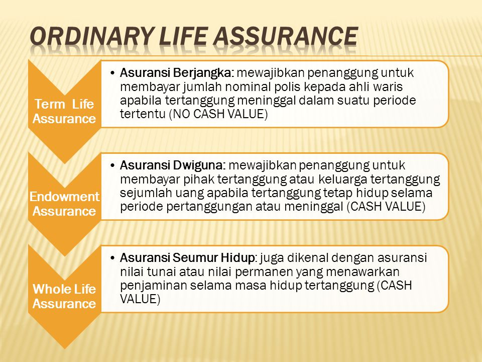ORDINARY LIFE ASSURANCE