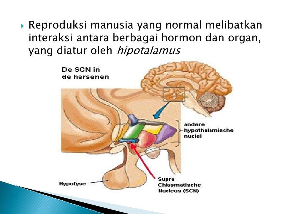 Reproduksi manusia yang normal melibatkan interaksi antara berbagai hormon dan organ, yang diatur oleh hipotalamus