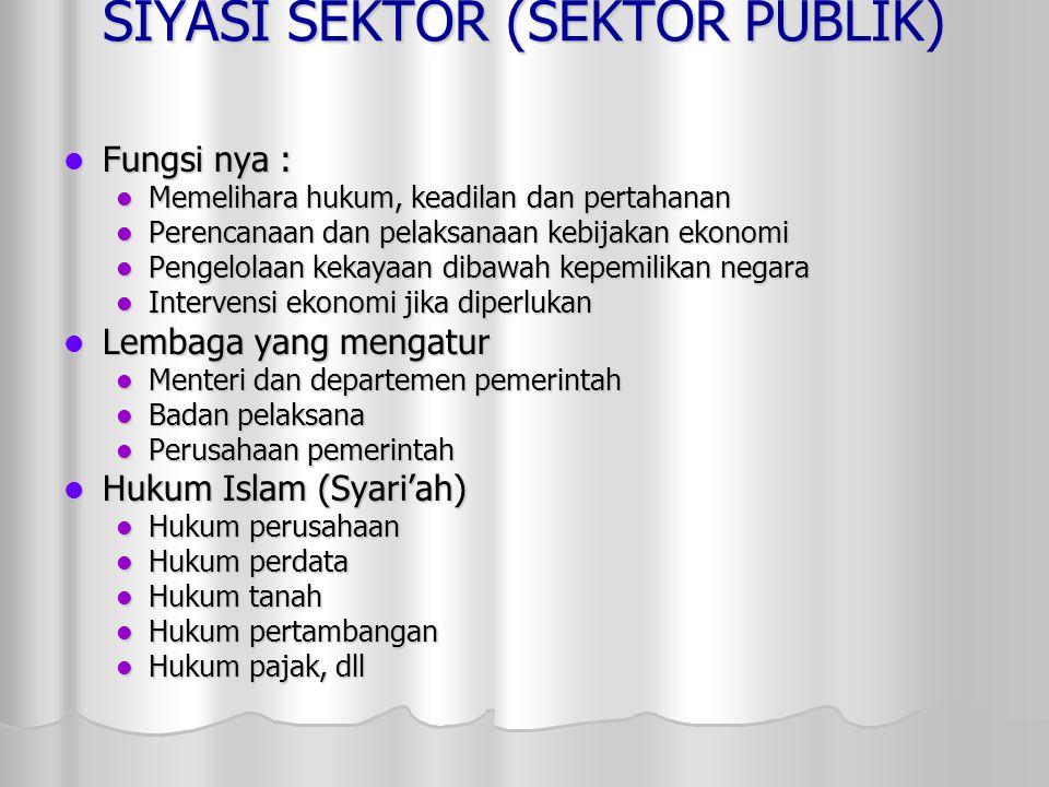 SIYASI SEKTOR (SEKTOR PUBLIK)
